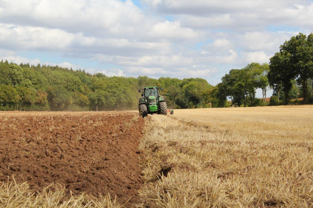 intensive-farming-UK